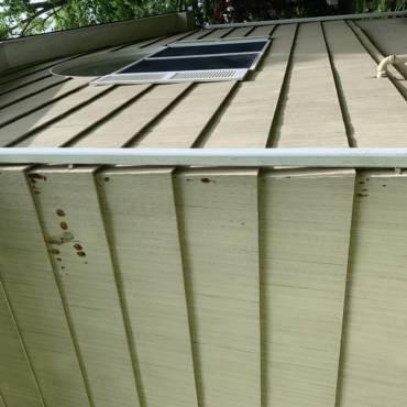 Woodpecker Damage in Norwalk